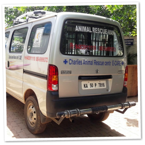 Animal Rescue Vehicle at CARE